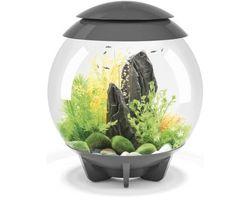 Aquarium biOrb Halo LED 30 Liter Grijs