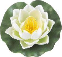 Velda Drijvende Vijverplant Lotus Wit 10 cm