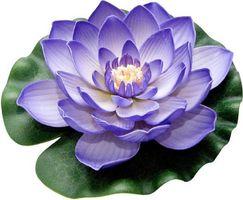 Velda Drijvende Vijverplant Lotus Paars 20 cm