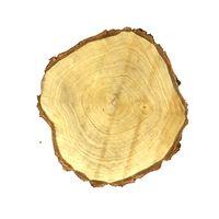 Dijk Natural Collections Houten Schijf Berk 30cm