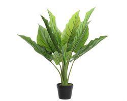Kunstplant Strelitzia in Pot