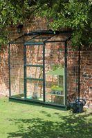 Royal Well Muurkas Wall Garden 62 Groen Gecoat Veiligheidsglas 3mm
