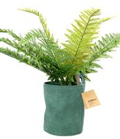 Bloempot Groen 13.5 x 16 cm