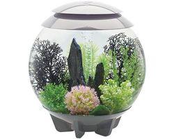 Aquarium biOrb Halo MCR 30 Liter Grijs