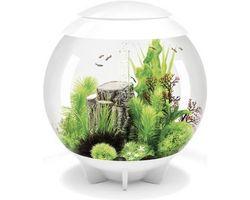 Aquarium biOrb Halo LED 60 Liter Wit