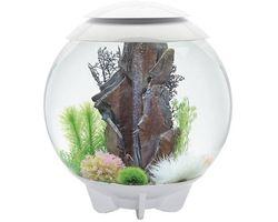 Aquarium biOrb Halo MCR 60 Liter Wit