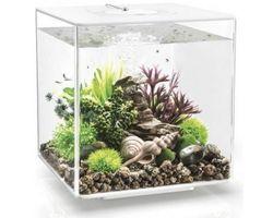 Aquarium biOrb Cube 30 LED Wit
