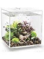 Aquarium biOrb Cube 60 LED Wit