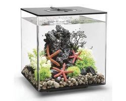 Aquarium biOrb Cube 30 LED Zwart
