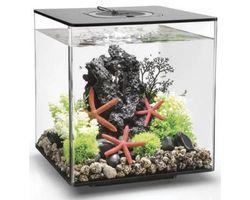 Aquarium biOrb Cube 30 MCR Zwart