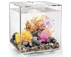 Aquarium biOrb Cube 60 LED Transparant