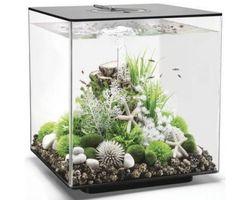 Aquarium biOrb Cube 60 LED Zwart