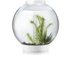 Aquarium biOrb Classic LED 30 Liter Wit