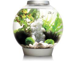 Aquarium biOrb Classic LED 30 Liter Zilver