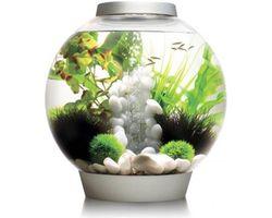 Aquarium biOrb classic MCR 30 liter zilver