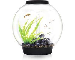Aquarium biOrb Classic LED 60 Liter Zwart