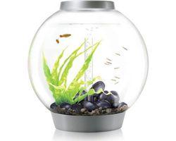 Aquarium biOrb Classic MCR 60 Liter Zilver