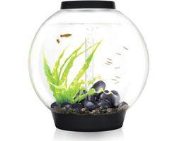 Aquarium biOrb Classic MCR 60 Liter Zwart