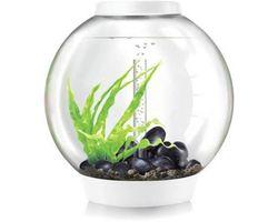 Aquarium biOrb Classic MCR 60 Liter Wit