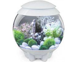 Aquarium biOrb Halo MCR 15 Liter Wit