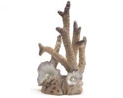 biOrb Koraal Ornament Groot