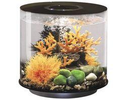 Aquarium biOrb Tube MCR 15 Liter Zwart
