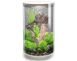 Aquarium biOrb Tube LED 30 Liter Wit