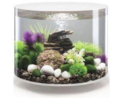 Aquarium biOrb Tube MCR 35 Liter Wit