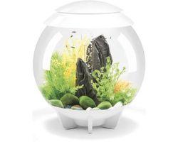 Aquarium biOrb Halo LED 30 Liter Wit