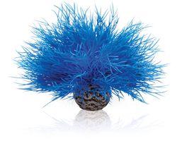 biOrb Aquarium Zeelelie Blauw