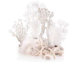biOrb Winter Dream Decoset - 30L