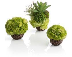 biOrb Koraalballen Set Groentinten