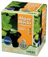 Velda Algenbestrijding Algae Blocks Met Dispenser