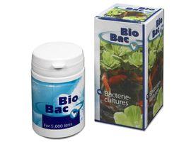 VT Bio Bac Bacteriecultuur 50 ml