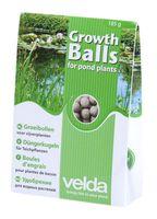 Velda Groeibollen 185 gram - 50 Stuks