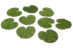 Velda Drijvende Vijverplant Lotus Bladeren 13 cm