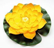Velda Drijvende Vijverplant Lotus Geel 20 cm