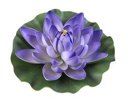 Velda Drijvende Vijverplant Lotus Paars 28 cm