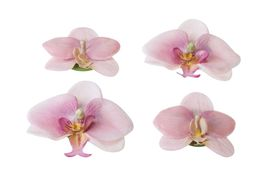 Velda Drijvende Vijverplant Orchidee Roze 7/9 cm - 4 Stuks
