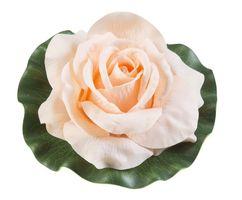 Velda Drijvende Vijverplant Roos Op Blad Oranje 17cm