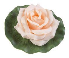 Velda Drijvende Vijverplant Roos Op Blad Oranje 13cm