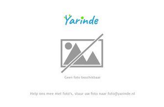 https://cdn.zilvercms.nl/http://yarinde.zilvercdn.nl/Foto volgt