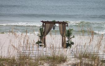 Strandtuin planten