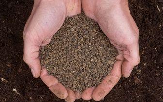 Bemesting en voeding tuinplanten