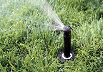 Rainbird pop up 1800
