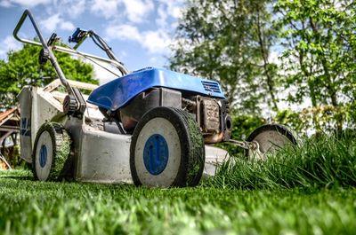 Beste grasmaaier voor kleine tuin