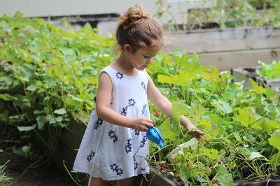 Onkruid bestrijden in je tuin