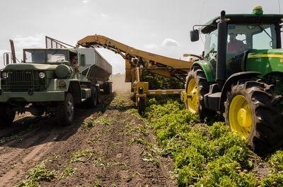 Tips voor het verbouwen van uw landbouwbedrijf