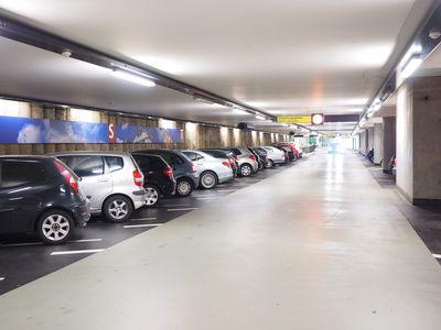 Biggenruggen, parkeerplaatsmarkeerders bij uitstek