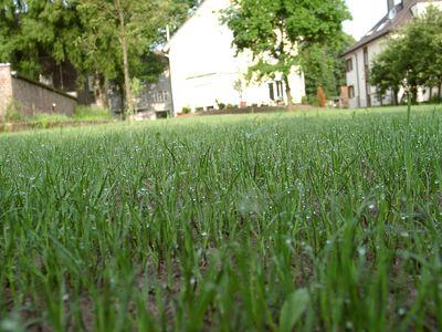 Gras verticuteren
